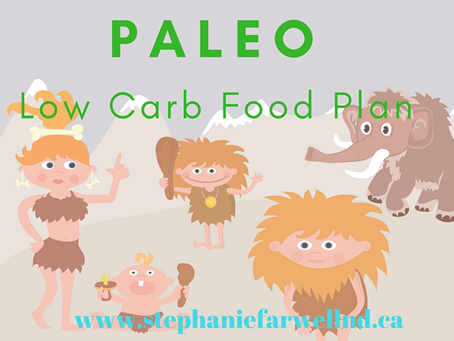 Low Carb Paleo Food Plan